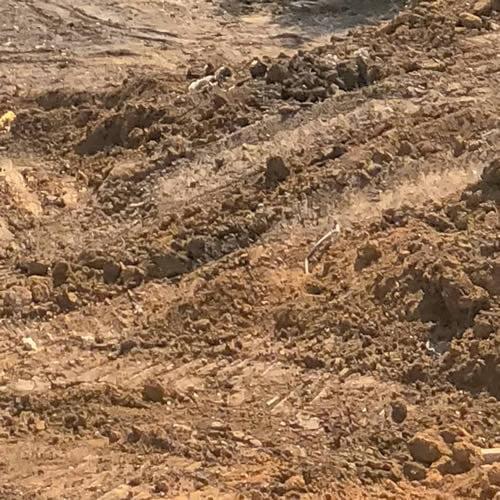 Soil Waste